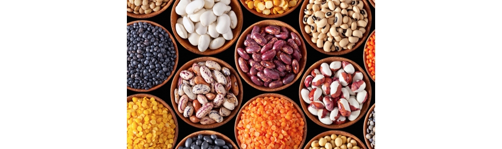 Legumes and other Vegetables